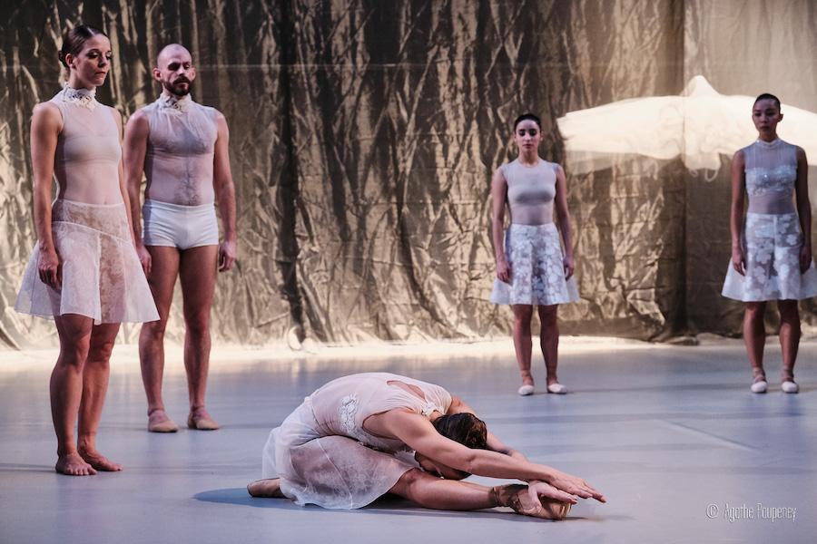 lac des cygnes radhouane el meddeb ballet opéra national du Rhin