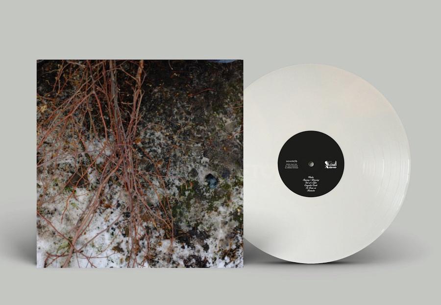 Vinyles Échelle / Massstab / Scala